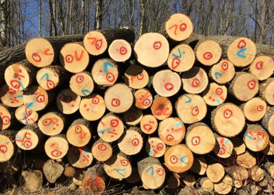 Log pile - log procurement page-1280