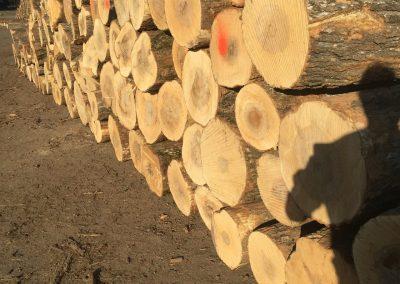 Log rank-lumber page-1280