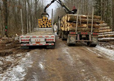 Log trucks loading-2-log procurement page-photos