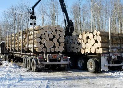 Log trucks loading-log procurement page-photos